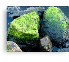 Green stone Canvas Print