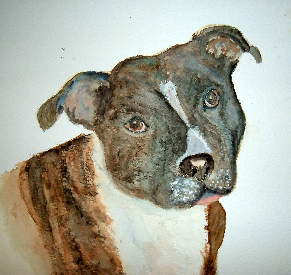 A stafordshire bull terrier by GEORGE SANDERSON