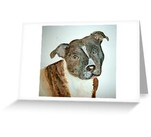 A stafordshire bull terrier Greeting Card