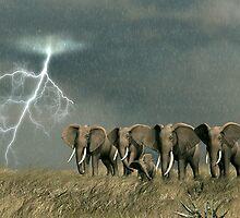 Monsoon on the Serengeti Plain by Walter Colvin