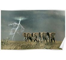 Monsoon on the Serengeti Plain Poster