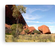 Small Native Tree at Base of Ayres Rock, Northern Territory, Australia. Canvas Print