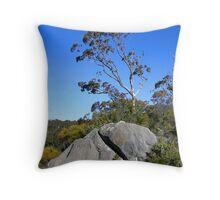 Tree and Boulder, Bungonia Gorge, NSW, Australia Throw Pillow