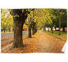 Autumn in Beechworth Poster