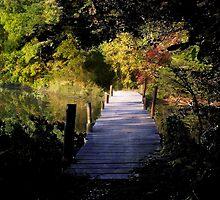 Watercolored Bridge by GreenmanStudio