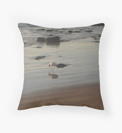 Seagull Reflections Throw Pillow