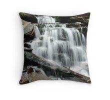 Ricketts Glen - Cayuga Falls Throw Pillow