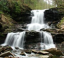 Ricketts Glen Tuscarora Falls by James Wheeler