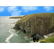 850-Land's End Photographic Print