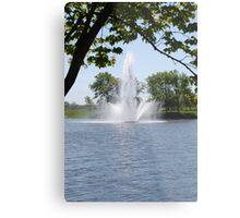 Fountain Metal Print