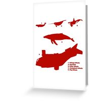 Whale Comparison Chart, TR alternate version (brighter red.) Greeting Card