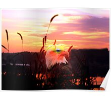 EAGLE EYE SUNRISE Poster