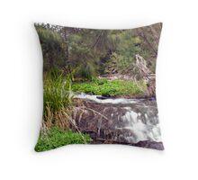 Undercliffe Falls  Throw Pillow