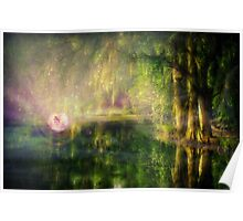 Fairy in Pink bubble in Serenity Forest Poster