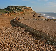 Hengistbury Head, Christmas Day 2014 by RedHillDigital