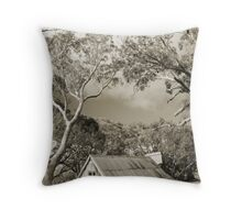 Echo's of the Past Throw Pillow