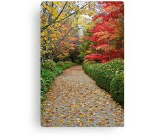 Autumn Colours Canvas Print