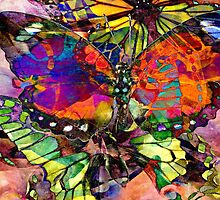 Happiness is a butterfly by Scott Mitchell
