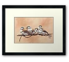Double Bars on Wire Framed Print