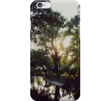 Autumn pillow with view iPhone Case/Skin