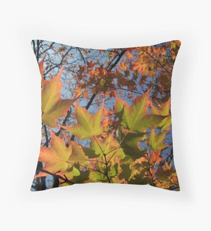 Autumn Sugar Maple Leaves in Full Glory Throw Pillow