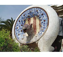 Parc Guell Photographic Print