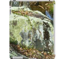 Boulder with lichen iPad Case/Skin