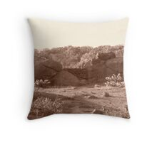 sharpshooter Throw Pillow