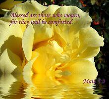 Blessed ....  Matt 5:4 by SharonD