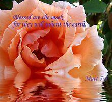 Blessed.... Matt 5:5 by SharonD