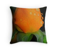 Poppin Peach Throw Pillow
