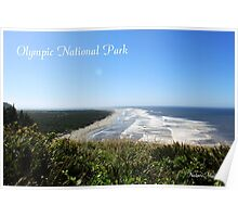 Olympic National Park, The sea waves rolling in landscape photography.  Poster