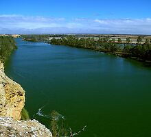 The Murray River by Michael Humphrys