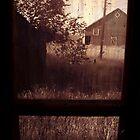 Windowpane by Larry  Stewart