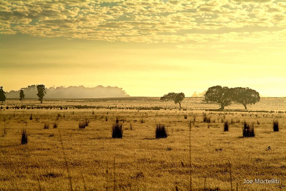 Dry Pasture,Mt Duneed by Joe Mortelliti