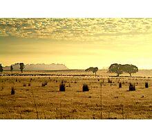 Dry Pasture,Mt Duneed Photographic Print