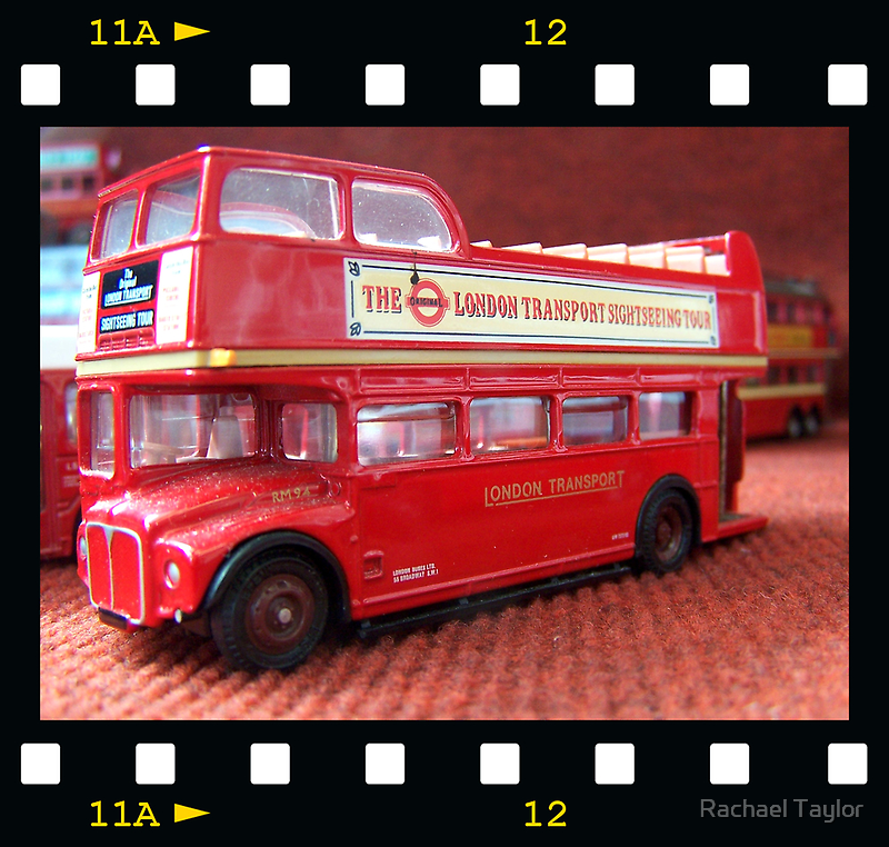 On the Buses by Rachael Taylor