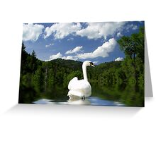 Looking Back Greeting Card
