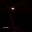 moon vision by David owens