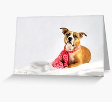 Fifty Shades of Pink Greeting Card