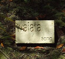 waiata by valumtimes