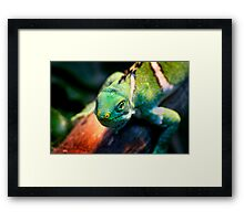 Green and mean! Framed Print