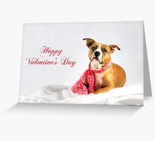 Fifty Shades of Pink - Happy Valentine's Day Greeting Card