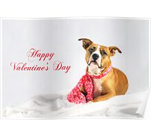 Fifty Shades of Pink - Happy Valentine's Day Poster