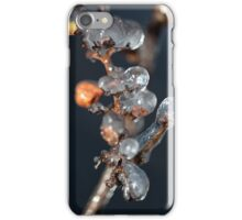 Ice Grapes iPhone Case/Skin