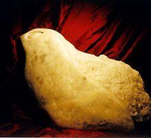 Seal by TerraChild