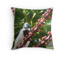 Blue-Eyed Honeyeater & Red Umbrella Tree Fruit Throw Pillow