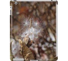 Silky Silence iPad Case/Skin