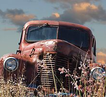 Rusted In Peace by rossco