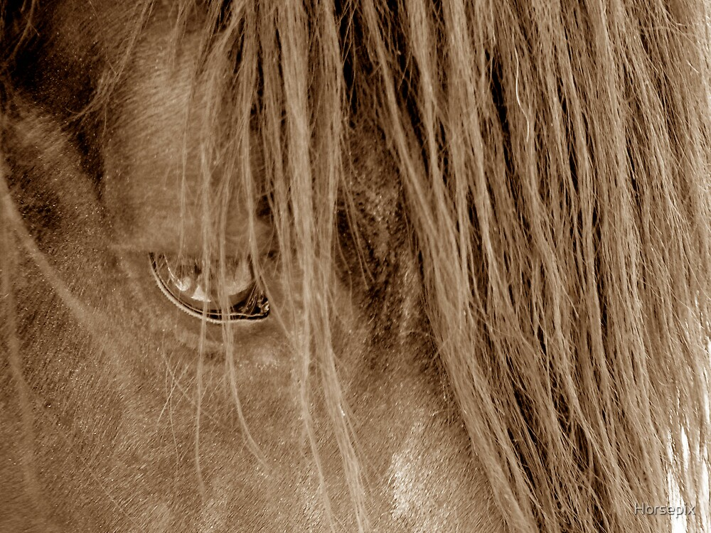 Muse by Horsepix